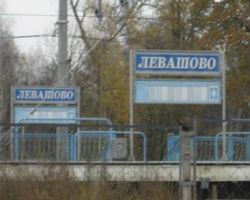"""фото ЗакС политика """"Молотки"""" и """"пистолеты"""" МО Поселок Левашово"""