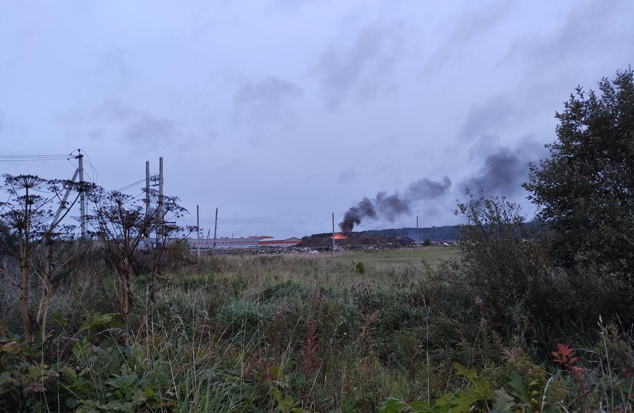 фото ЗакС политика Активисты продолжают жаловаться на сжигание мусора под Колтушами