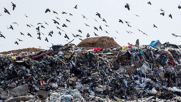 """фото ЗакС политика В Курортном районе собирали подписи против строительства """"мусорных"""" объектов"""