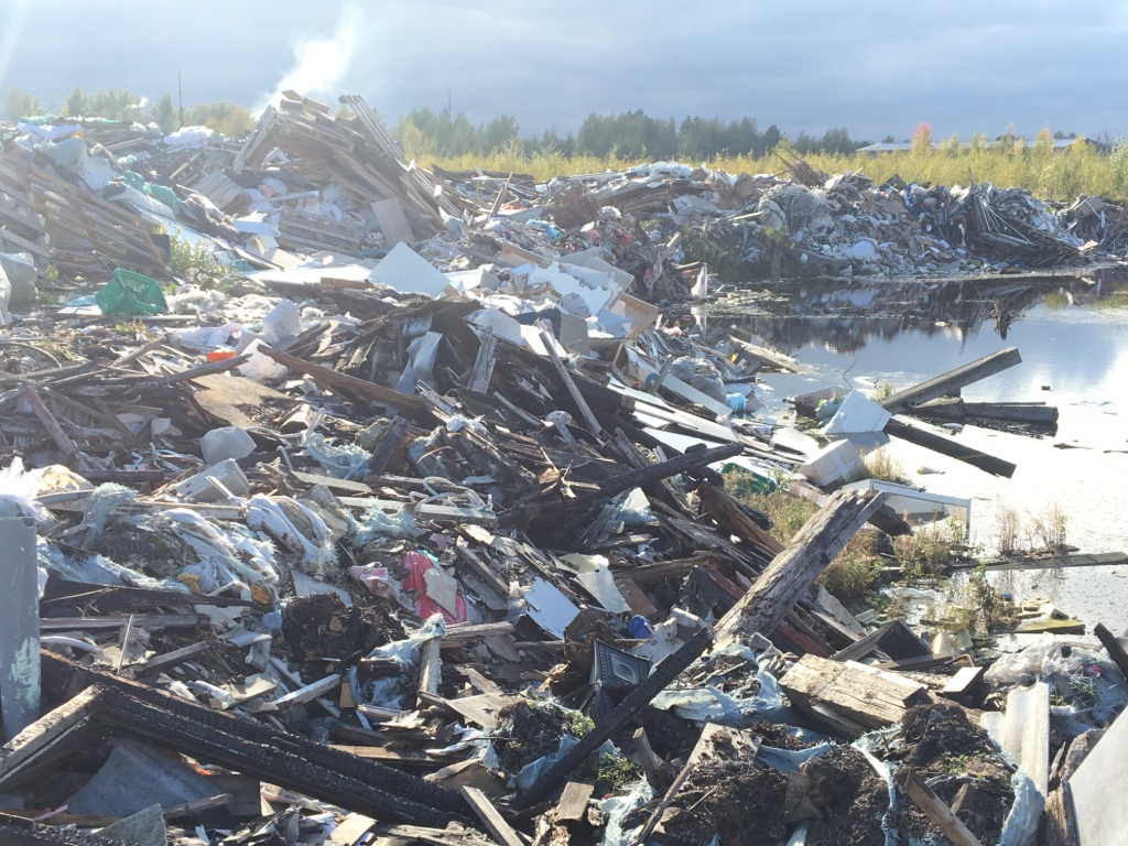 фото ЗакС политика Экоактивистов тревожит растущая свалка в Кузьмоловском