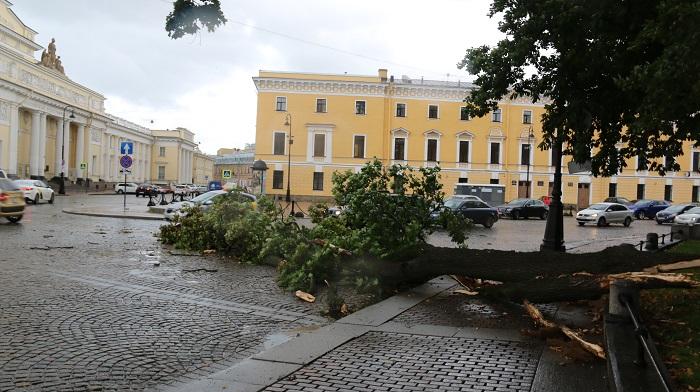 фото ЗакС политика Скверы в центре Петербурга закрыли на случай штормового ветра