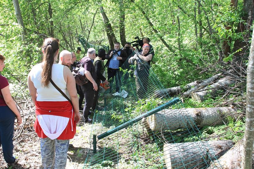 фото ЗакС политика Активисты в Токсово снесли забор бывшего начальника МЧС