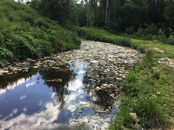 фото ЗакС политика Активисты добились от чиновников признания экологических нарушений под Киришами