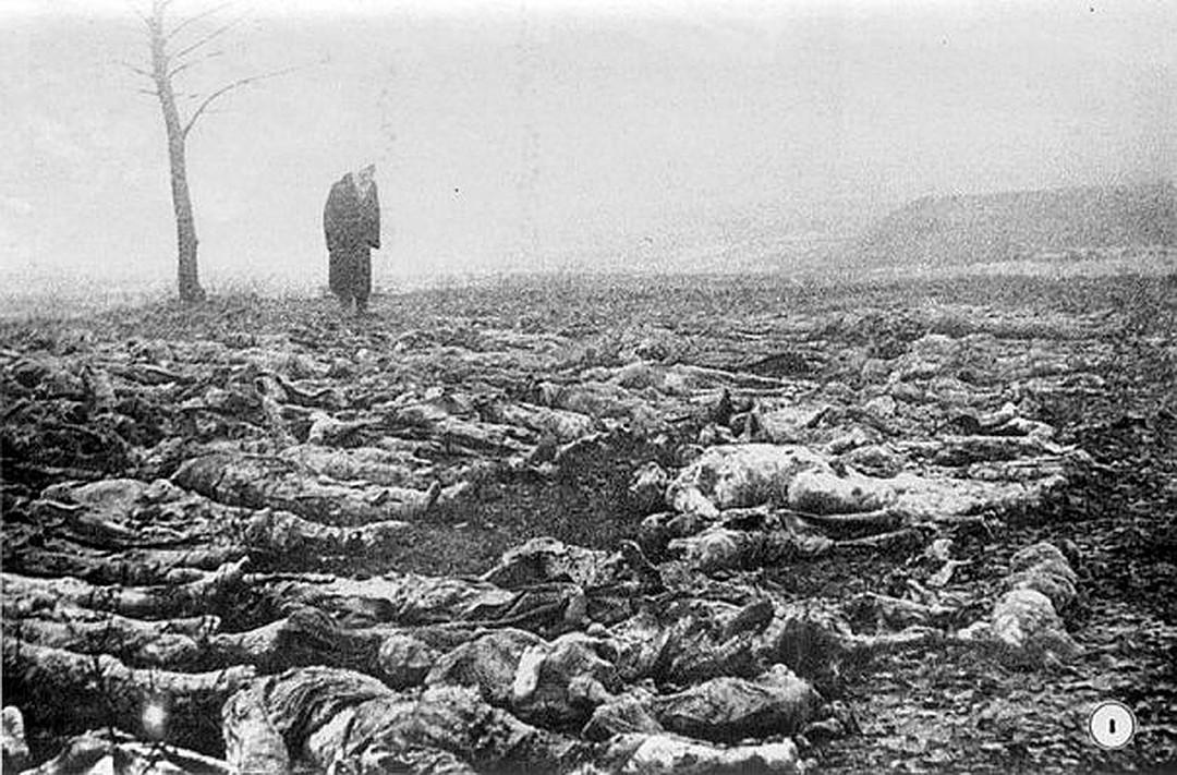 фото ЗакС политика Под Новгородом нашли останки 400 людей, расстрелянных немцами в годы ВОВ