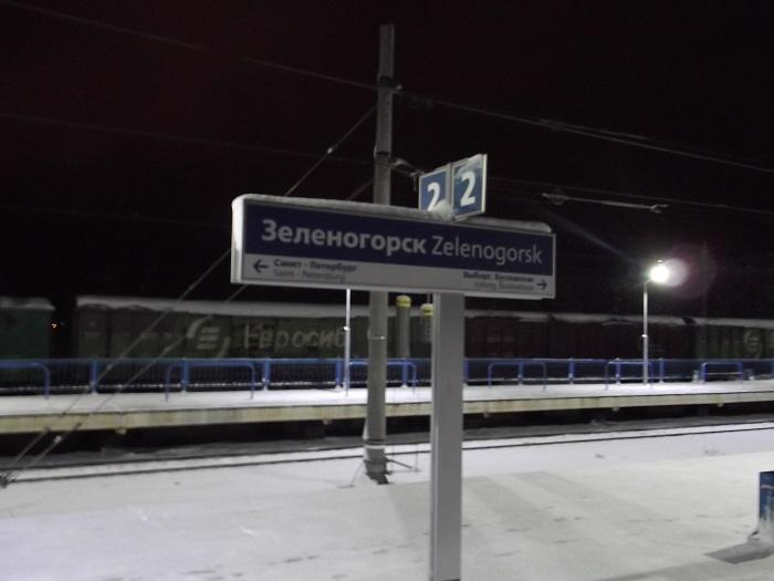 """фото ЗакС политика В Зеленогорске провели экопрогулку против строительства """"мусорных"""" объектов"""