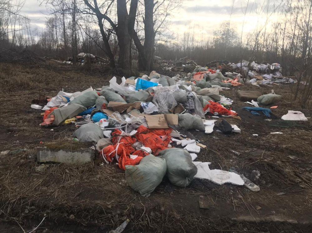 """Активисты вновь выявили размещение отходов на """"закрытой"""" свалке у реки Оккервиль"""
