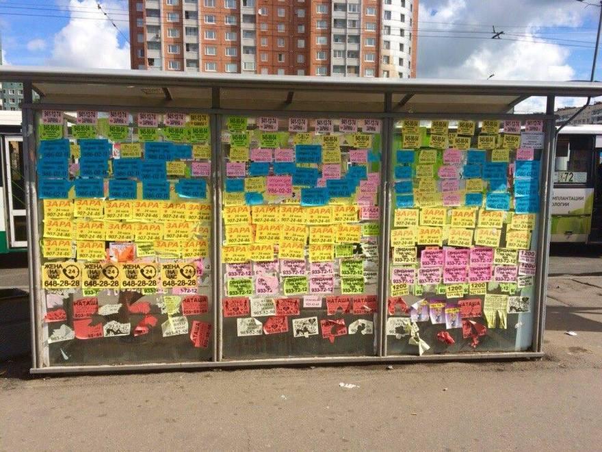 фото ЗакС политика Новгородские власти горды борьбой с уличной рекламой незаконных услуг