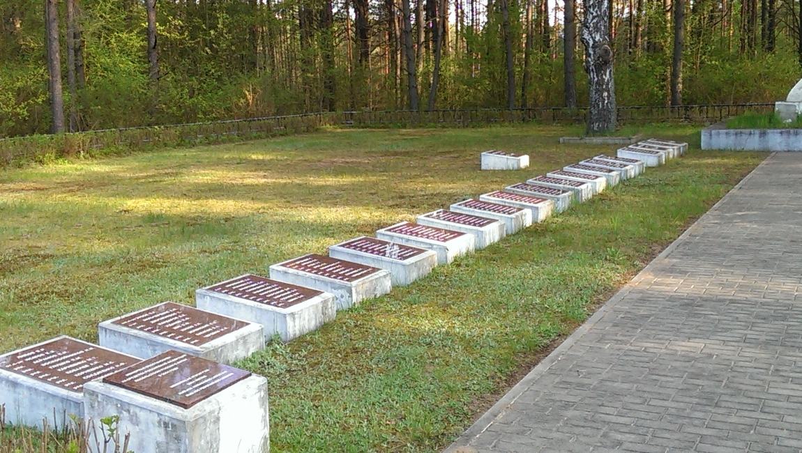 фото ЗакС политика Под Новгородом нашли тела мирных граждан, убитых во времена ВОВ
