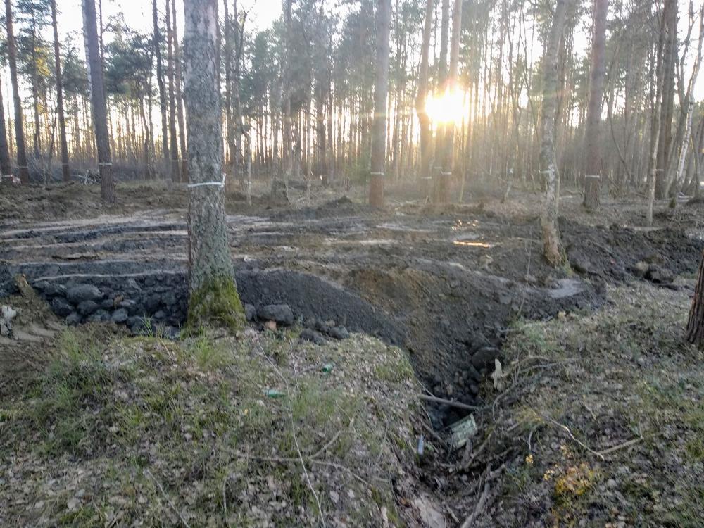 фото ЗакС политика В поселке им. Свердлова признали незаконной рубку деревьев