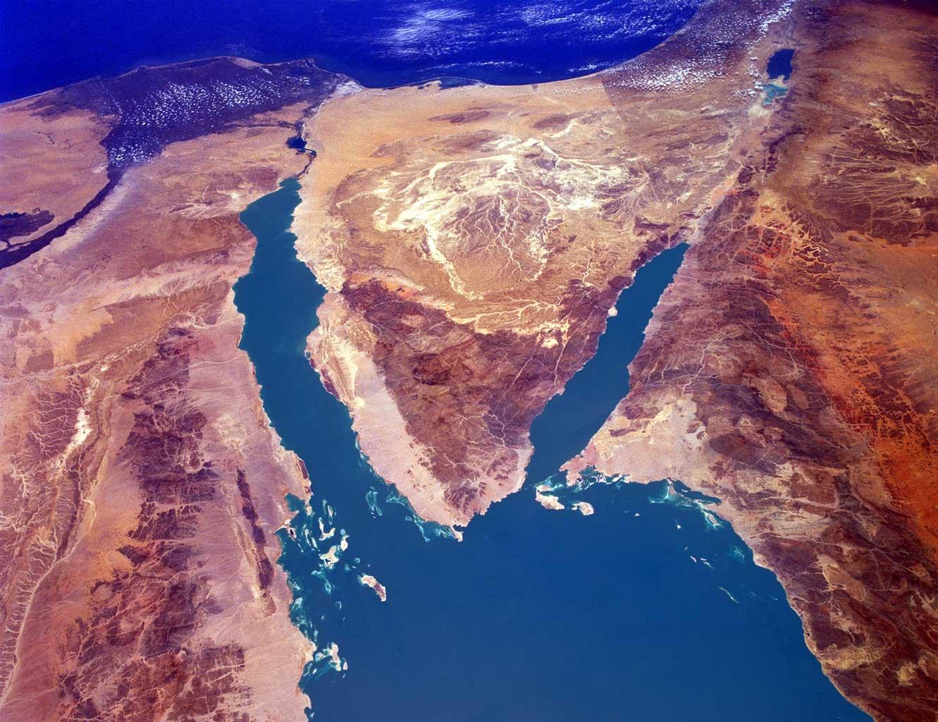 фото ЗакС политика В Ленобласти помянули жертв авиакатастрофы над Синаем