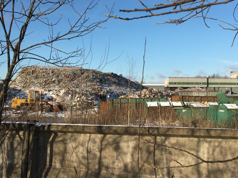 Экологи нашли новые загрязнения в Янино