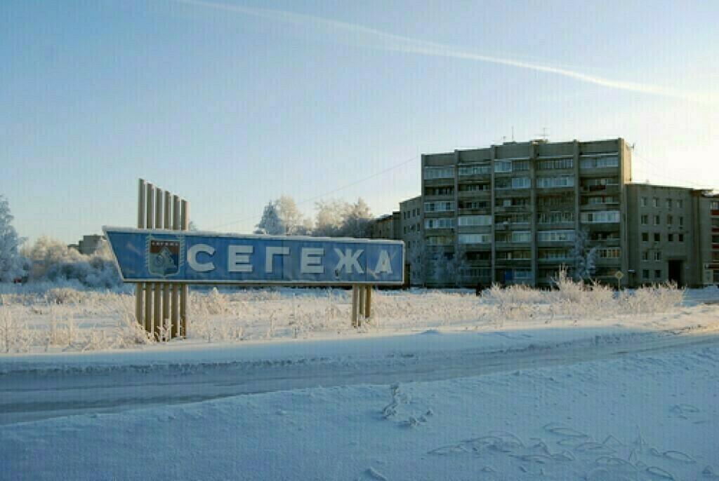 фото ЗакС политика Глава Карелии назвал причину напугавшей жителей массовой гибели птиц