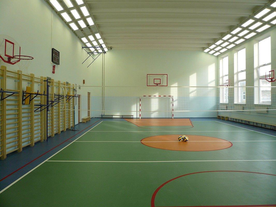 фото ЗакС политика Школьные спортзалы в Ленобласти подвергнутся модернизации