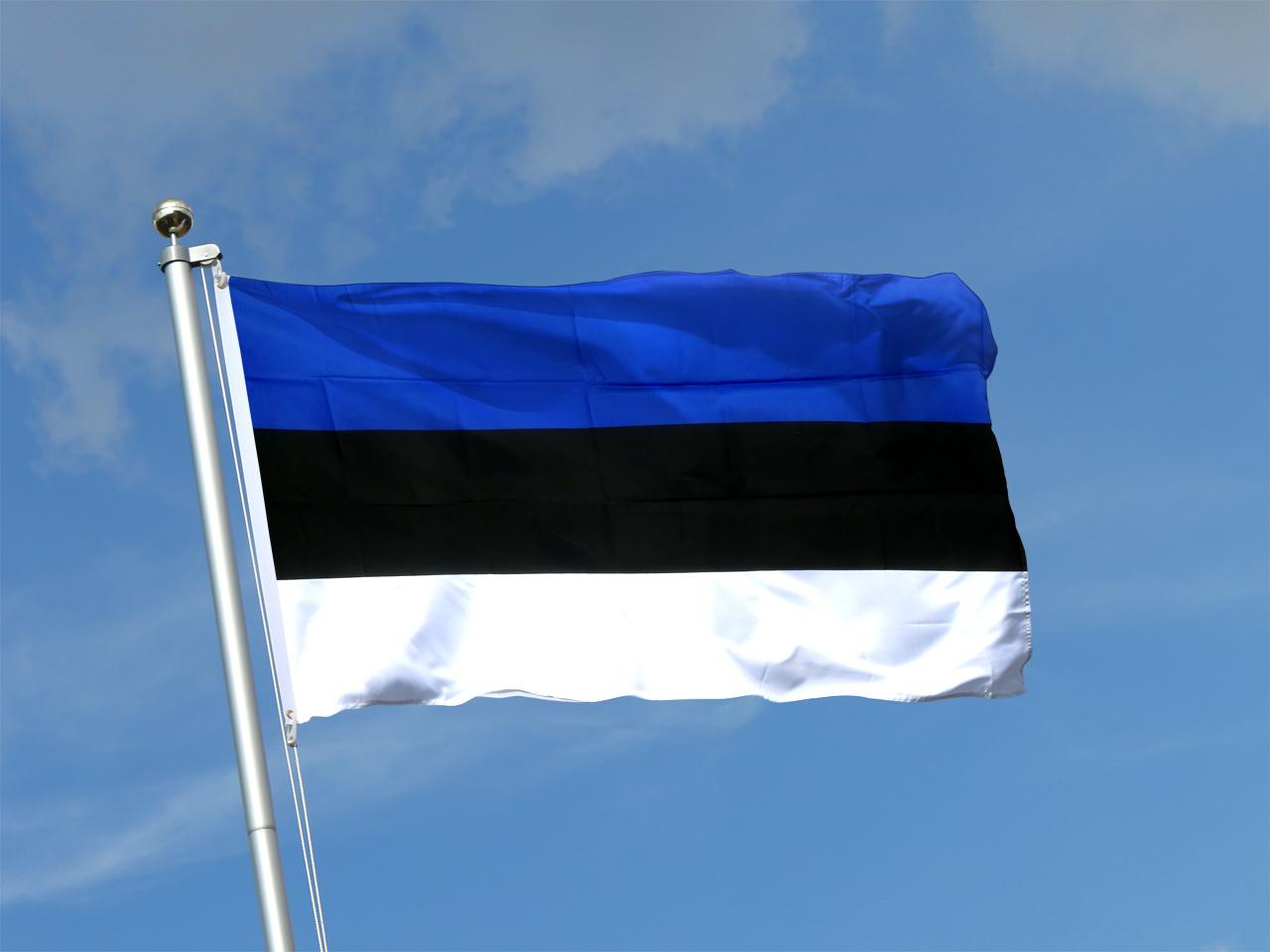 фото ЗакС политика Глава Псковской области снисходительно оценил территориальные претензии Эстонии