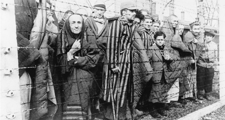 фото ЗакС политика В Петербурге начал работу музей жертв нацизма