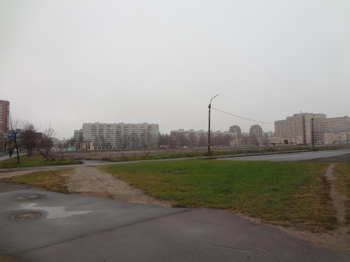 фото ЗакС политика Защитники Муринского парка просят перенести стройку на место бывшего Северного рынка