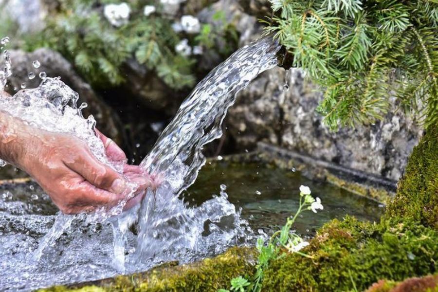 фото ЗакС политика В Ломоносовском районе просят предотвратить загрязнение воды