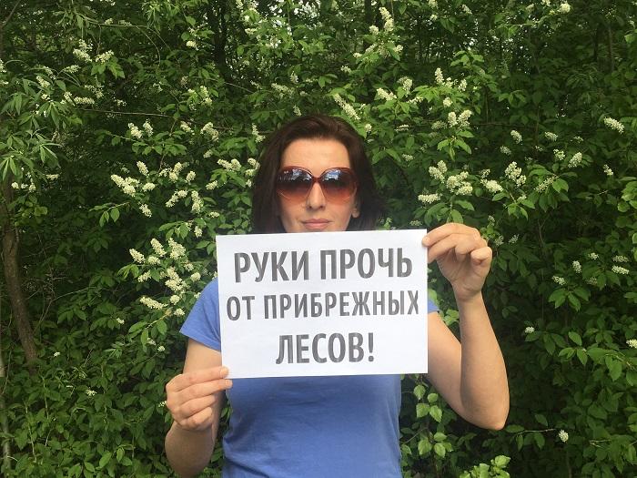 фото ЗакС политика В Архангельске защищают поморские леса от Рослесхоза