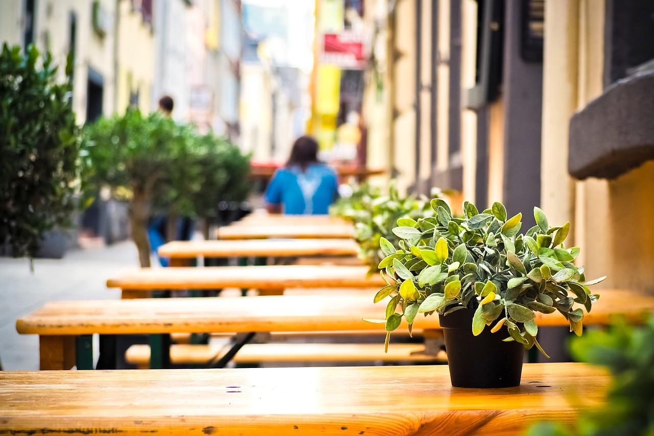 фото ЗакС политика Рестораторы ждут равноправного диалога со Смольным, ограничивающим их работу