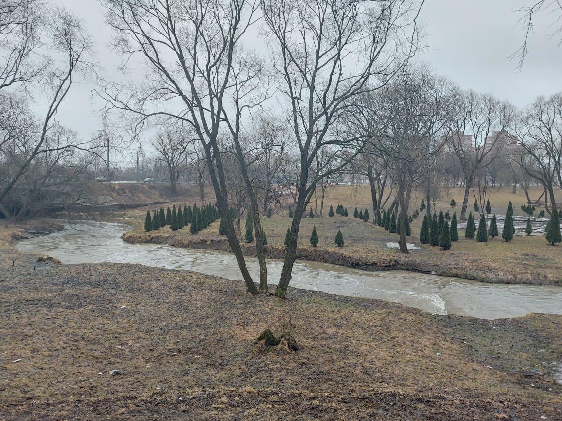 Реку Дудергофку очистили от мусора