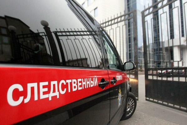 фото ЗакС политика СК возбудил уголовное дело из-за годовалого ребенка на акции 27 июля в Москве