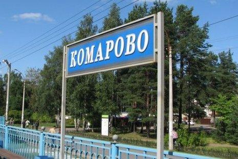 фото ЗакС политика Руководителей МО Поселок Комарово оштрафовали после проверки КСП