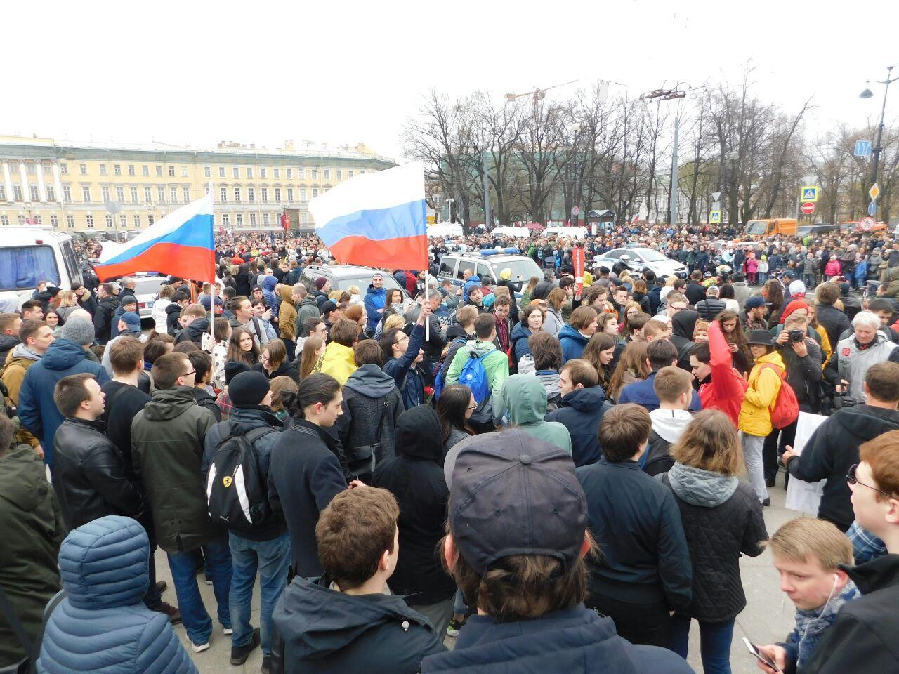 фото ЗакС политика Коллегия петербургского Горсуда не захотела отводить себя в процессе о вытоптанных газонах