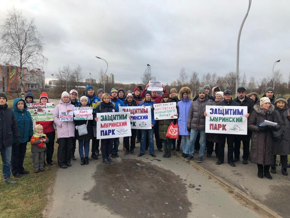 фото ЗакС политика Защитники Муринского парка обратились за помощью к Путину