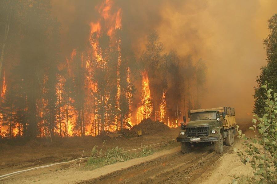 фото ЗакС политика Чиновник назвал сумму приблизительного ущерба, причиненного экономике РФ лесными пожарами