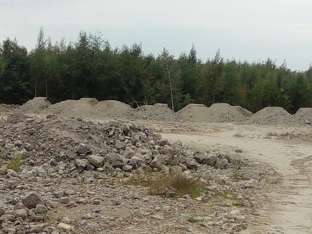 """фото ЗакС политика Администрация Красносельского района опровергла информацию о """"несуществующей"""" свалке на Петергофском шоссе"""