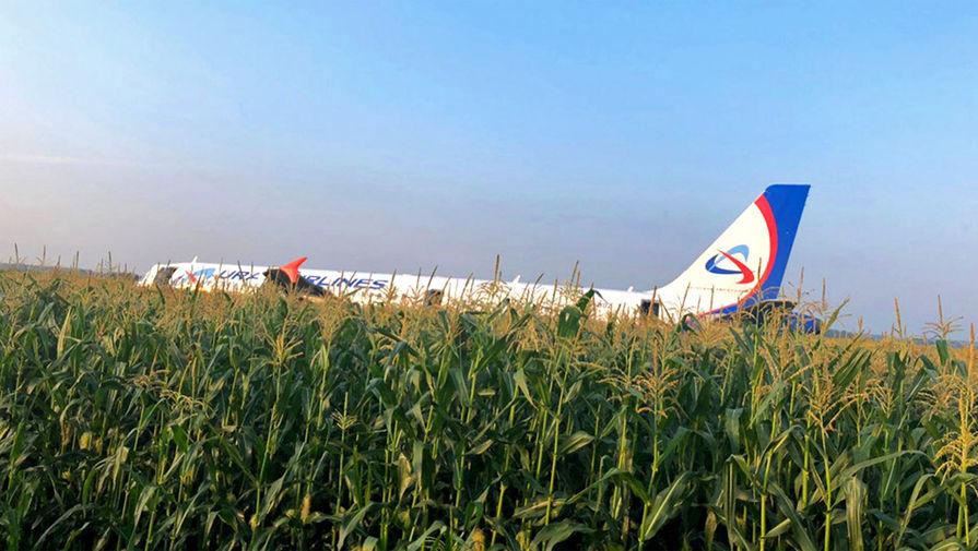 фото ЗакС политика Экипажу севшего в кукурузном поле самолета вручили ордена Мужества
