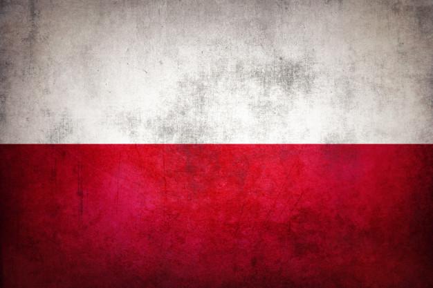 фото ЗакС политика Вишневский спросил Смольный о закрытии школы с изучением польского языка