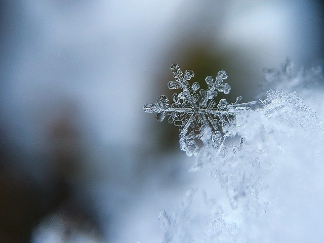 "фото ЗакС политика В Ленобласти введут ""комендантский час"" для подростков на время зимних каникул"