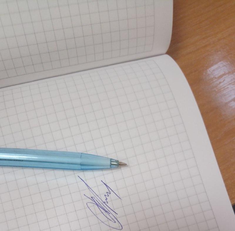 """ИКМО """"Поселок Шушары"""" заподозрила подделку подписей у самовыдвиженца"""