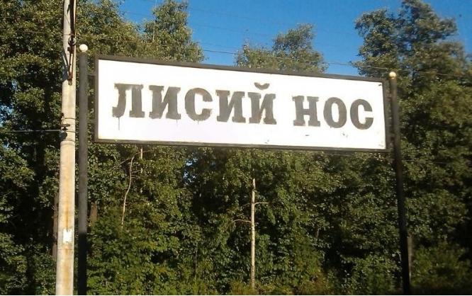 фото ЗакС политика Жители поселка Лисий Нос решили создать параллельный орган самоуправления