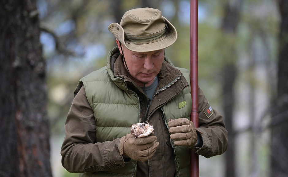 фото ЗакС политика Путин собрал грибы в сибирской тайге накануне дня рождения