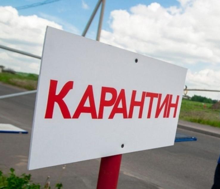 фото ЗакС политика Госдума одобрила ужесточение уголовной ответственности за нарушение карантина