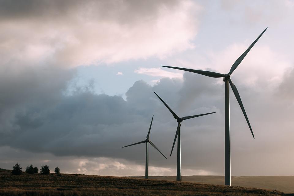 фото ЗакС политика Под Калининградом сносят первую в России ветроэлектростанцию