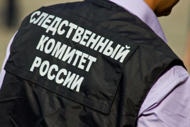 фото ЗакС политика Петербуржца вызвали на повторный допрос в СК в рамках дела о фейке о COVID-19