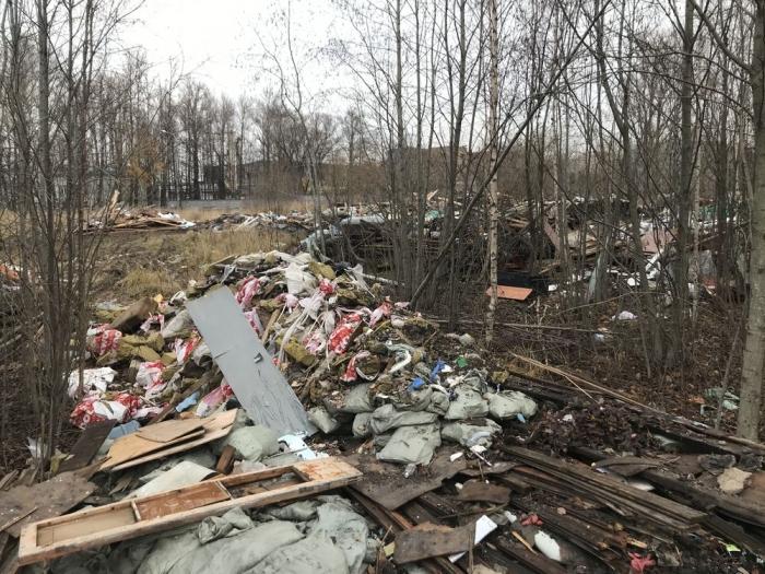 фото ЗакС политика Экологи выявили очередную промышленную свалку в Невском районе