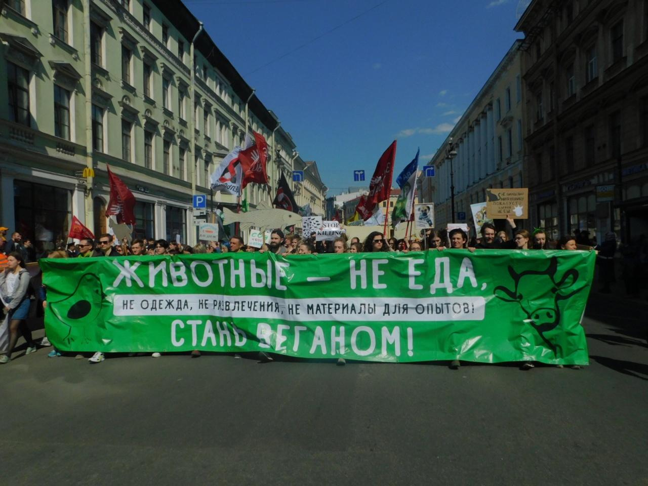 фото ЗакС политика Первомайский марш зоозащитников пройдет в онлайн-формате