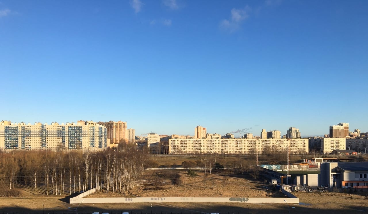 фото ЗакС политика Защитники Муринского парка передали еще 6100 подписей Беглову