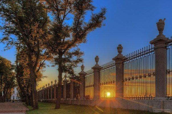 фото ЗакС политика Летний и Михайловский сады откроются для посещения с середины июля