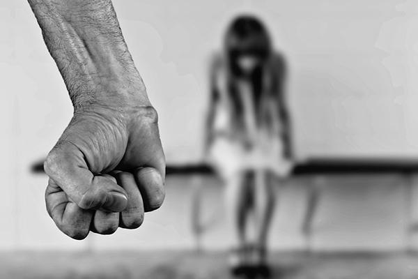 фото ЗакС политика Муниципалы Ломоносова обратились к Шойгу после похищения 15-летней девочки